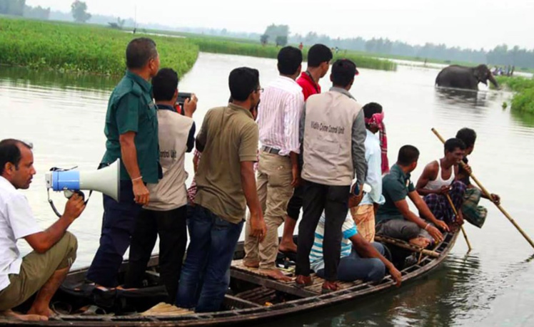 Bangladesh : un éléphant en détresse secouru après avoir parcouru 1.000 km