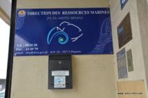 Bisbille autour de la nomination de la directrice des ressources marines et minières