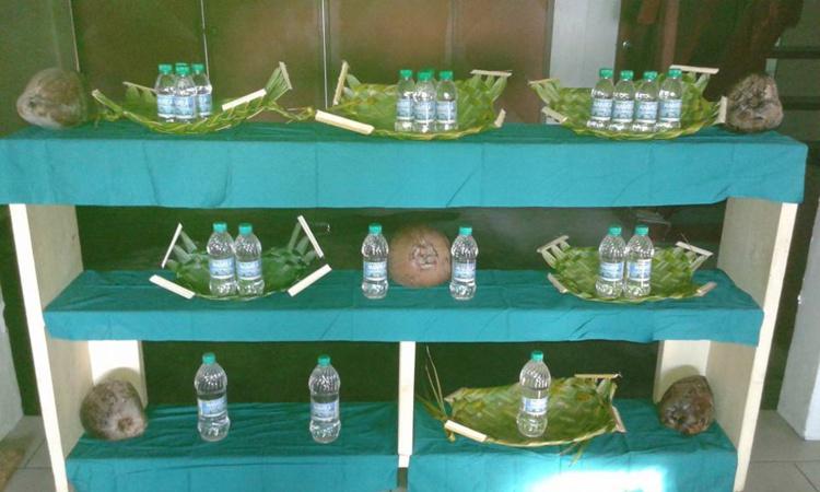 Huile vierge de coco : un avenir pour le fenua ?