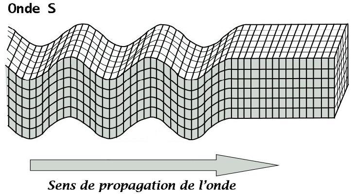 Première détection d'une onde sismique S après un micro-séisme