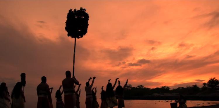 Festival Polynesia : Halau Na kipu'upu'u, groupe de danse hawaiien (vidéo)
