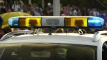 Un policier blessé par des plombs en Guadeloupe