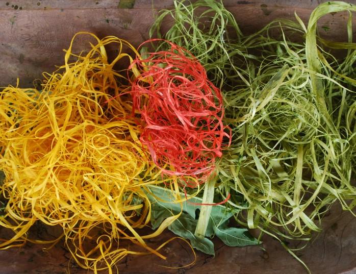 Fibres végétales teintes en teintures naturelles
