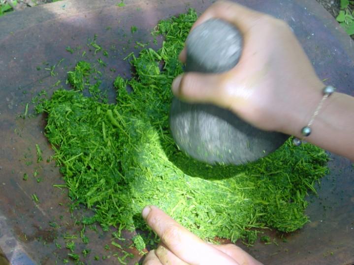 Feuilles de papayer écrasées au penu (pilon en pierre).