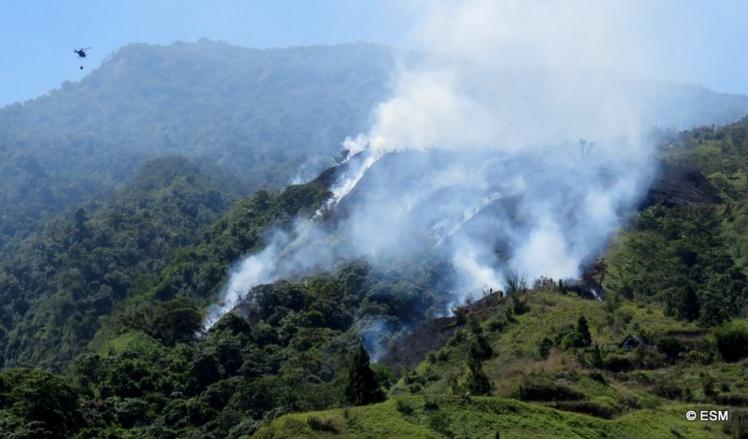 Te Maru Ata : l'incendie a dévasté trois hectares, les pompiers toujours mobilisés dimanche (Màj)