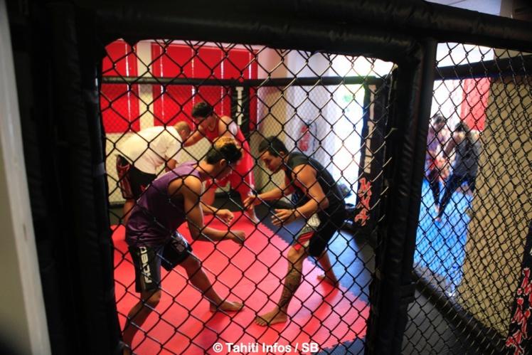 Une cage a été installée pour les entrainements