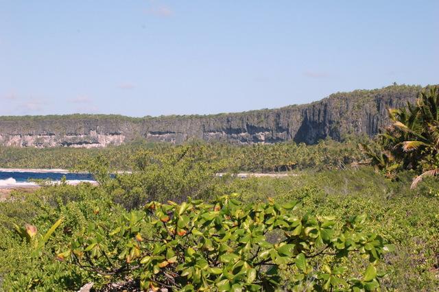 Les sites miniers de Makatea ont fermé en 1966, il y a 50 ans. En 58 ans, 11,2 millions de tonnes avaient ainsi été extraits. Julien Mai prépare une exposition pour retracer l'histoire de Makatea.