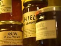 """2016, nouvelle année """"catastrophique"""" pour la production de miel, avec 9.000 tonnes (Unaf)"""