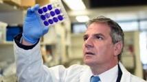 Deux vaccins expérimentaux anti-Zika efficaces chez des singes