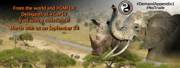 Appel à manifester pour les animaux sauvages samedi partout dans le monde