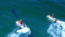 Un jeune surfeur blessé par un requin en Australie