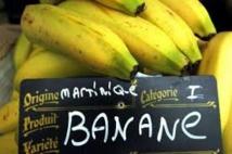 Parlement européen: la commission du commerce international défend la banane des Outre-mer
