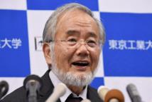 """Le Nobel de médecine à un Japonais qui a exploré l'""""usine de recyclage"""" cellulaire"""