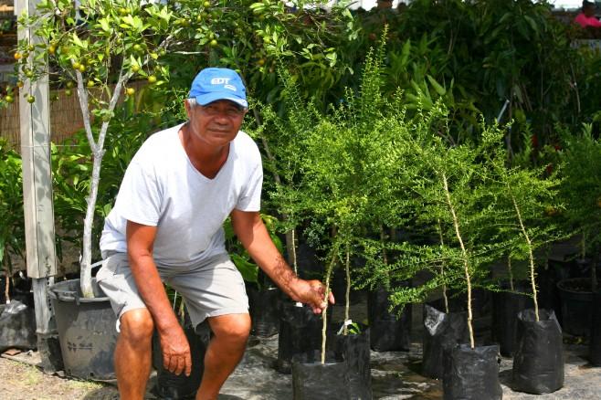 Louis Lui Mu Yoe prend la pose aux côtés de ses magnifiques plants de jeunes citronniers caviar. Nous en avons vu deux pieds sur un autre stand de la foire. Photo : DP