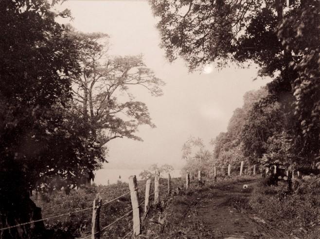 Route entre Manaia et Papara en 1900. Photo Franck Homes.