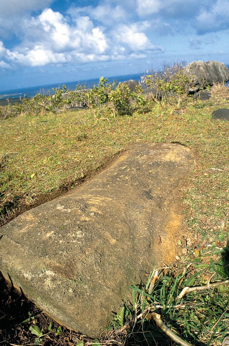 La partie supérieure de l'ahu Akivi, telle qu'elle apparaît aujourd'hui. Pour ainsi dire invisibleCe moai et quelques autres presque totalement enterrés sont les seuls vestiges imposants du véritable ahu Akivi. À vous de le redécouvrir au cours d'une randonnée pour le moins originale.