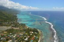 50 professionnels du Pacifique réunis autour d'ateliers de l'agriculture bio
