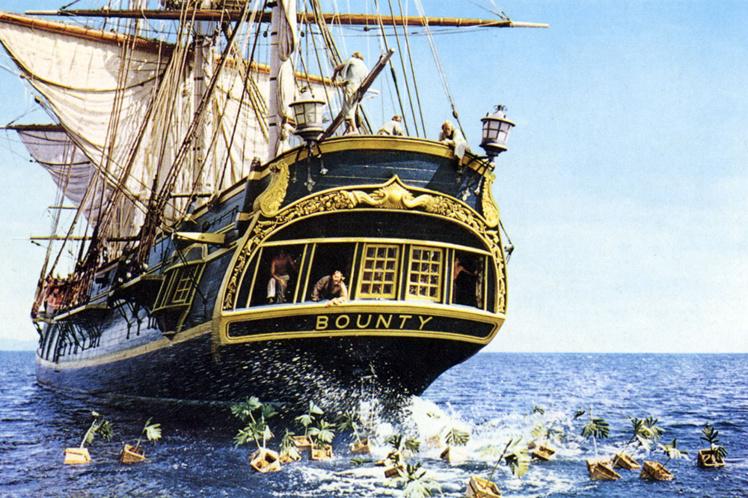 Un festival du Bounty ce week-end à la pointe Vénus
