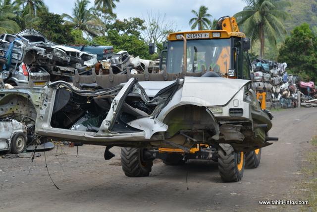 410 carcasses ont été ramassées sur Papara.