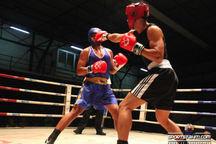 Boxe « Chpt novices » : Des demies finales expéditives