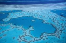 La N-Calédonie s'organise pour gérer l'immense parc naturel de la mer de corail