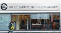 Au musée du phallus de Reykjavik, le pénis sous toutes ses formes