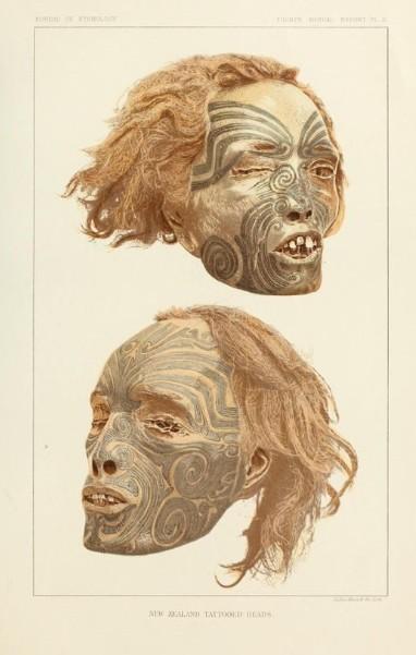"""Les publications de l'époque (magazines et revues de voyages et de géographie) mettaient en évidence l'intérêt de ces """"curios"""" maoris alors très recherchés."""