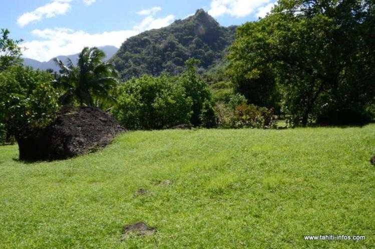 Papara accueille le 8e Forum du Patrimoine foncier polynésien