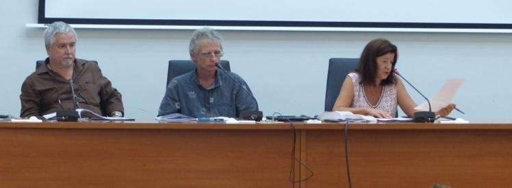 Me Michel Delgrossi, notaire, Jean-Michel Petit, vice-président de l'ordre des géomètres, et Laetitia Ellul-Curetti, magistrat, vice-présidente du tribunal de première instance de Papeete sont intervenus vendredi dernier.