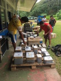 Artifices Polynésie : faire rêver en toute sécurité
