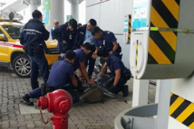 Chasse au cochon sauvage à l'aéroport de Hong Kong