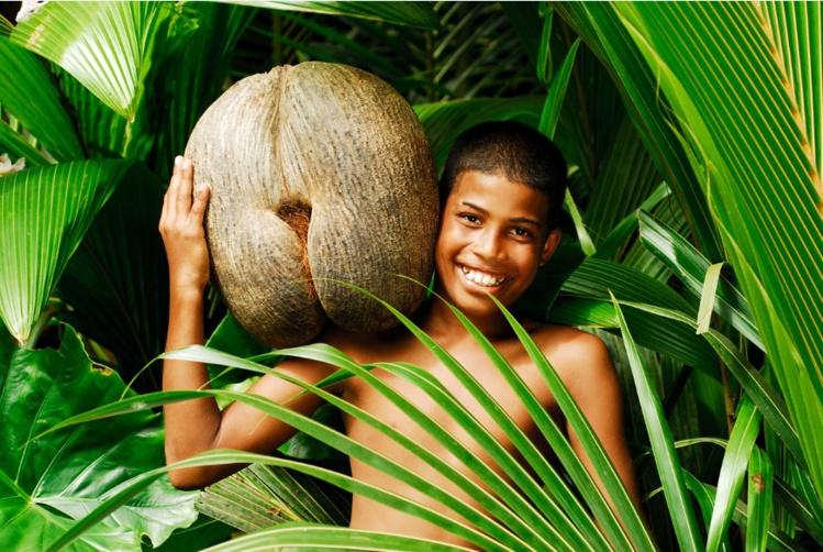 On doit une découverte spectaculaire à Marion-Dufresne, en 1768, celle de l'origine précise de la coco fesse, ou coco de mer, originaire des Seychelles (de l'île de Praslin très exactement), produite par un palmier (et non pas une plante sous-marine comme on le pensait à l'époque !). C'est la plus grosse graine du monde.