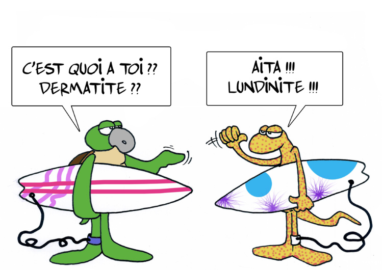 """"""" La dermatite du surfeur """" vu par Munoz"""
