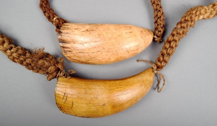 A l'époque de l'installation de Savage aux Fidji, deux choses avaient de l'importance pour les clans : les armes à feu des Européens et les dents de cachalot que leur fournissaient les baleiniers.