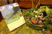 Evolution Farm, et si le bio tropical nous était conté?
