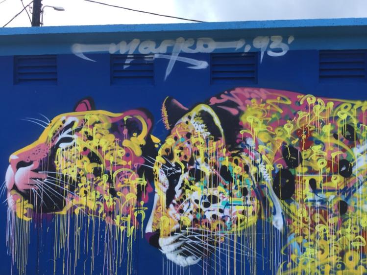 Marko93, qui a peint de splendides félins à Papeete et à Uturoa, est de retour au fenua ! (Crédit photo : TNG/Ono'u)