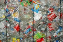 Une start-up promet des récompenses aux bons trieurs de bouteilles en plastique