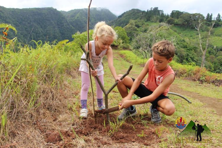 Une vingtaine de bénévoles, dont de nombreux enfants, est montée au premier refuge de l'Aorai avec pioches, pelles, plants et même trois bancs… À dos d'homme. Ils espèrent que leurs efforts transformeront ce sentier en vrai jardin d'Eden. (photo : Rando Nettoyeurs)