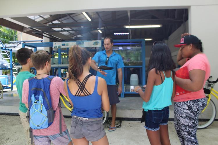 """Présentation de l'écostation et des recherches scientifiques en cours (""""Post Larval Capture"""", """"Bouturage des coraux"""" par le Criobe et """"acidification des océans """" par l'université de Washington)."""