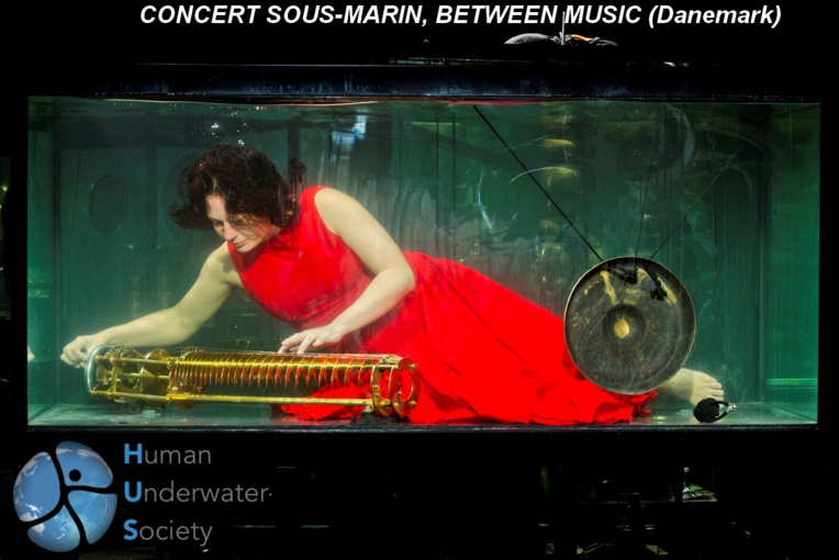 Le prix du public au HUS Design Prize : Aquasonic de Between Music. Un concert sous l'eau, une idée géniale d'artistes danois.