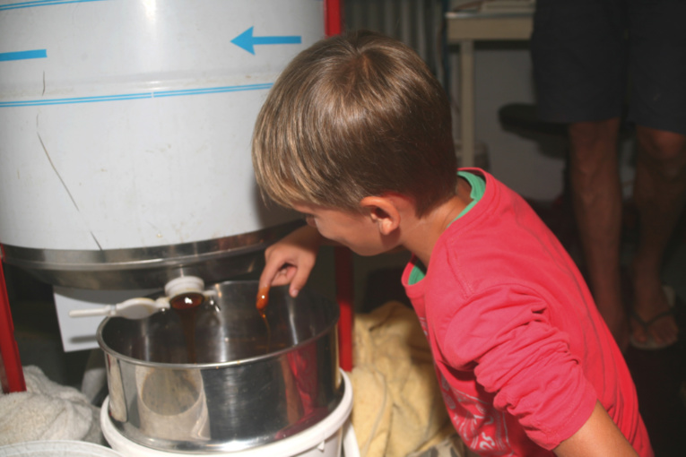 Dégustation centrifugeuse