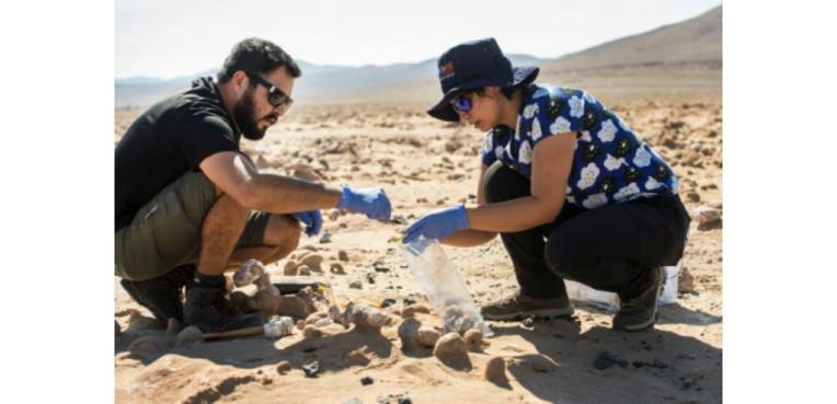 Les biologistes chiliens Cristiana Dorador et Jonathan Garcia prélèvent des fragments de sel pour les analyser, dans le désert d'Atacama, le 7 mars 2017 au Chili ((c) Afp)