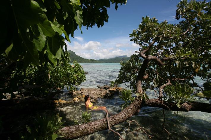 La partie sud de l'île de Raiatea est aussi sauvage que préservée. Depuis le motu aux oiseaux, on aperçoit la côte où est implanté l'hôtel Opoa Beach.