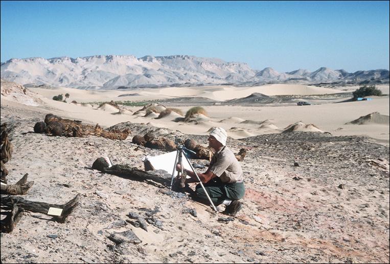 Egypte: six momies découvertes dans une tombe de l'époque pharaonique