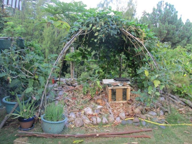 La permaculture mise en lumière au village de l'alimentation