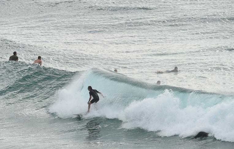 Une touriste française réchappe à un requin en Nouvelle-Zélande
