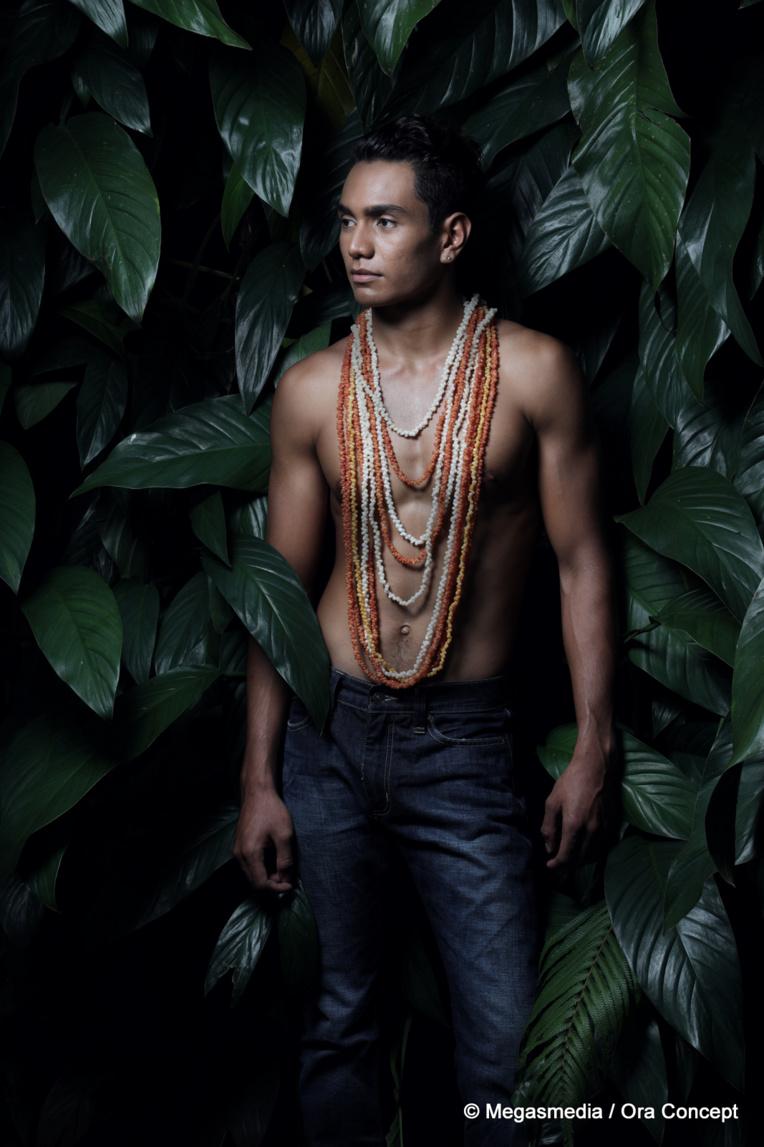 L'un de ces douze apollons sera élu Mister Tahiti 2017 ce soir