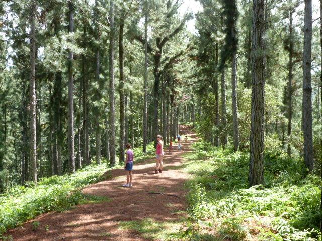 Vaipahi : les recherches des randonneurs disparus se poursuivent