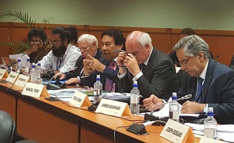 Tahiti au Séminaire du Comité de décolonisation des Nations Unies