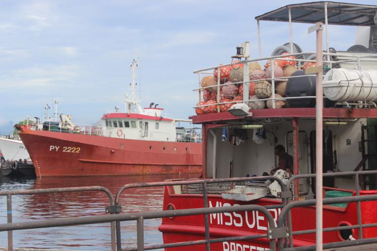 Le projet de pêche aux Marquises ne fait pas l'unanimité
